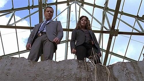 Life 2008 Blueray: Season 2 – Episode Trapdoor