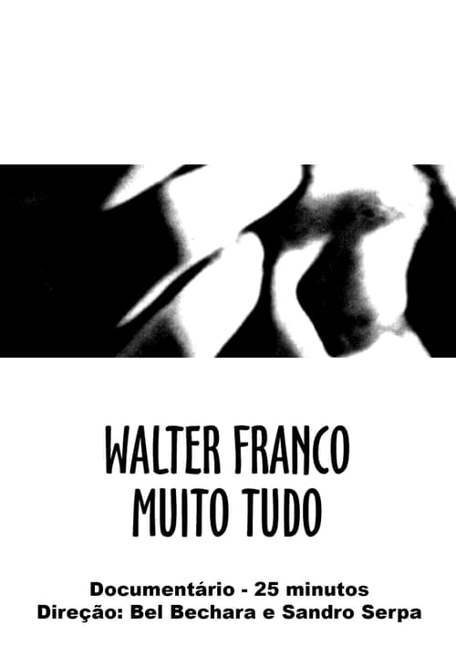Walter Franco Much Everything (2000)