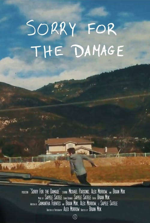 Sorry For the Damage (2016)