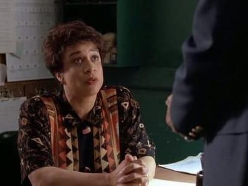 Law & Order: Season 4 – Épisode Doubles