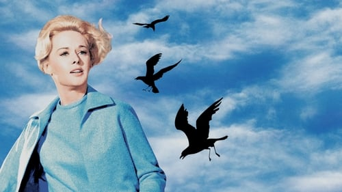 Subtitles The Birds (1963) in English Free Download | 720p BrRip x264