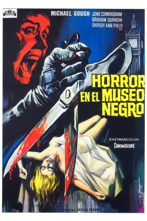 Ver Horror en el museo negro Gratis