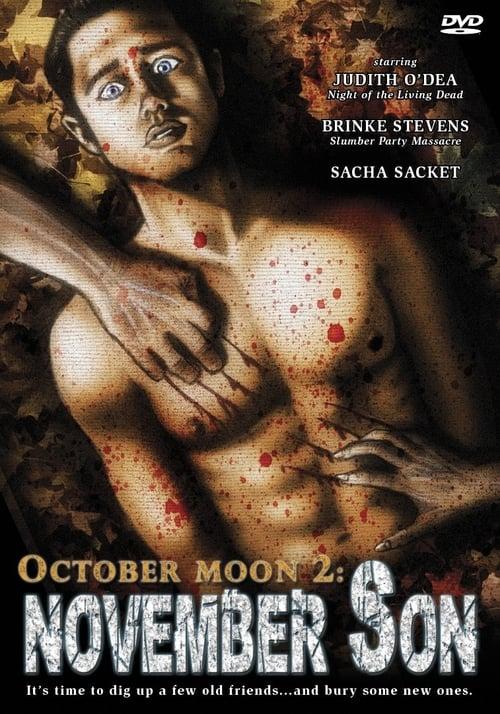 October Moon 2: November Son poster