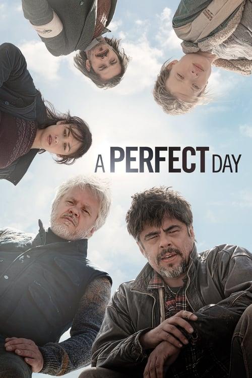 A Perfect Day ( Mükemmel Bir Gün )