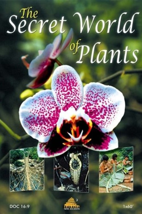 The Secret World of Plants