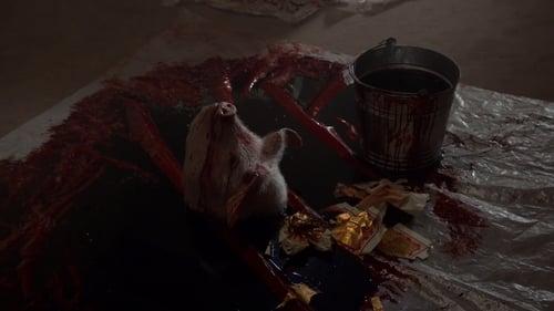 House - Season 8 - Episode 18: Body and Soul