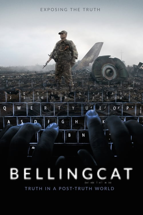 Película Bellingcat: Truth in a Post-Truth World Con Subtítulos En Español