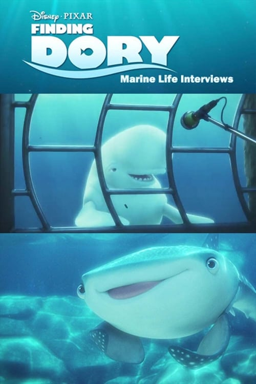 Marine Life Interviews (2016)