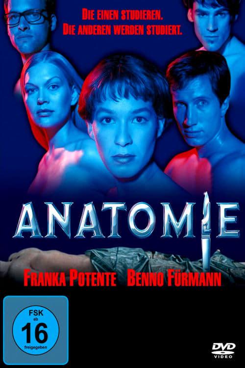 Poster von Anatomie