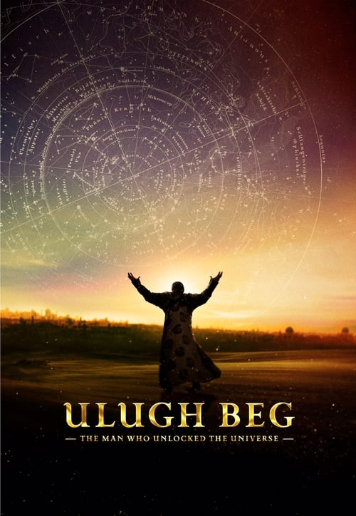 The Man Who Unlocked the Universe (2017)