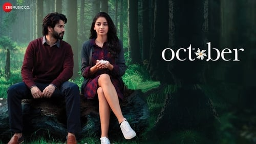 October 2018 DVDRip bollywood movie
