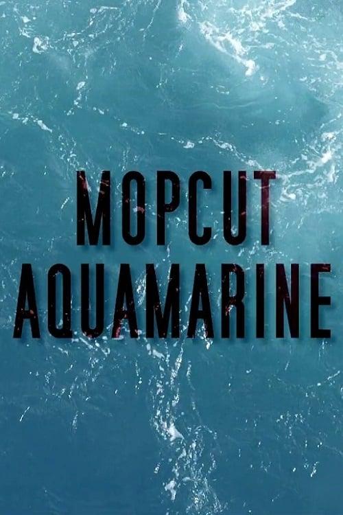 Regarder Aquamarine (2020) streaming