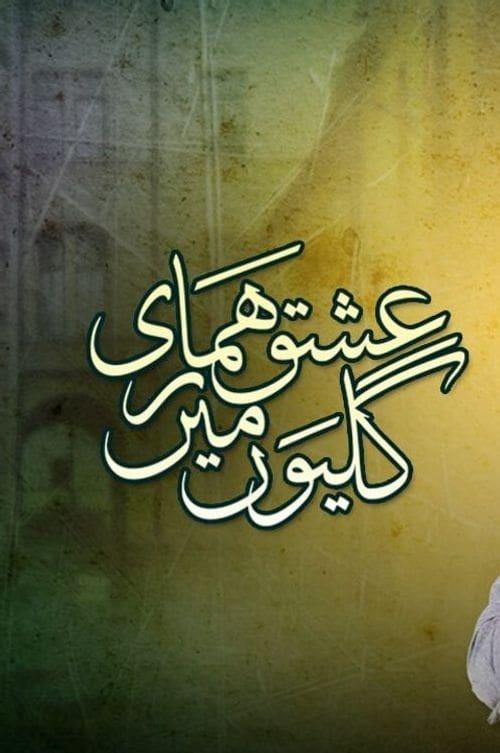 Ishq Hamari Galiyon Mein (2013)