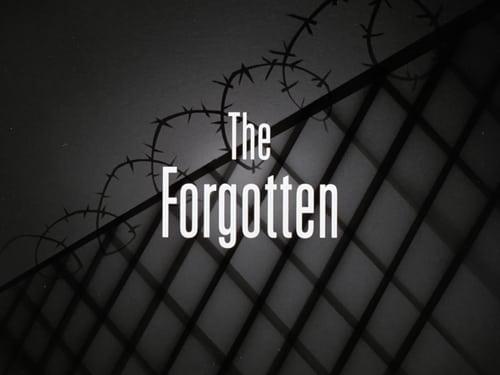 Batman: The Animated Series - Season 1 - Episode 23: The Forgotten