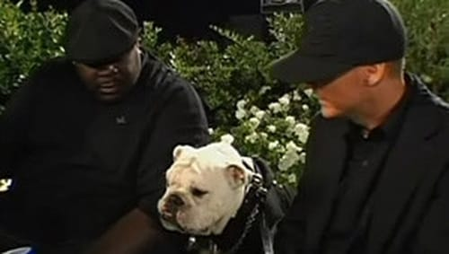 Watch Rob & Big S3E11 Online
