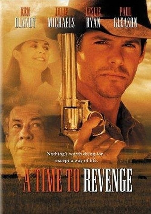 The poster of A Time to Revenge