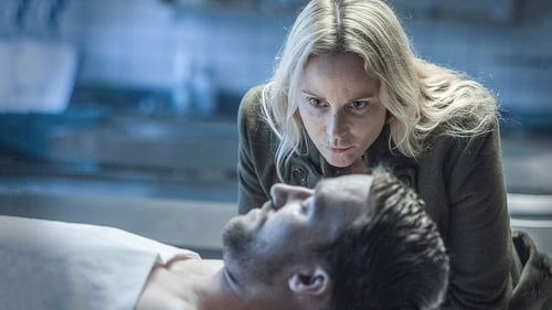 Assistir The Bridge S04E02 – 4×02 – Legendado