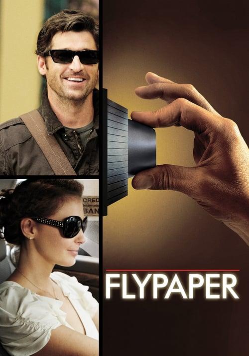 Streaming Flypaper (2011) Full Movie