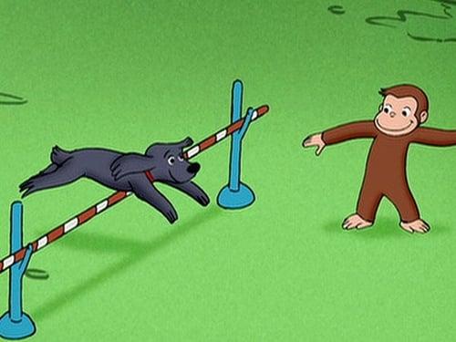 Poster della serie Curious George