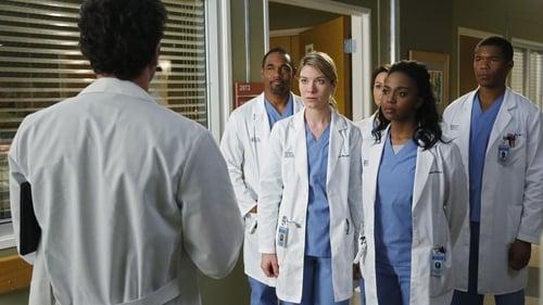 Grey's Anatomy - Season 10 - Episode 20: Go It Alone