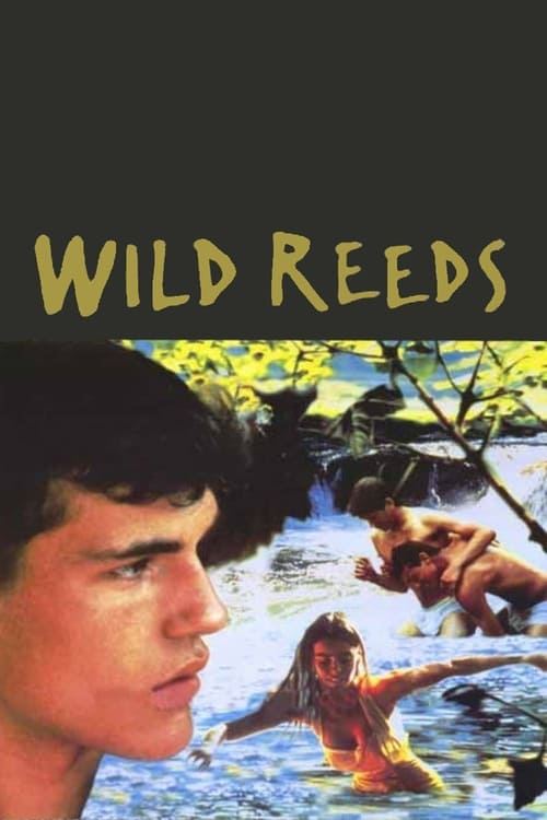 Largescale poster for Wild Reeds