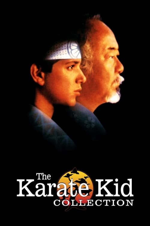 The Karate Kid Collect...