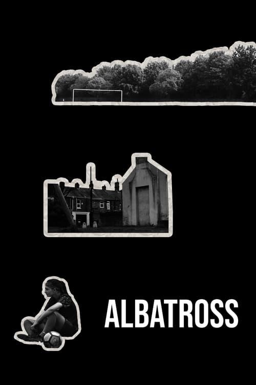 Albatross Download Torrent