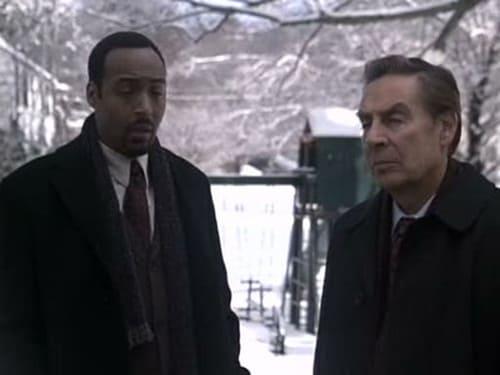 Law & Order: Season 11 – Episod White Lie