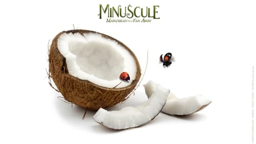 Watch Minuscule 2: Mandibles From Far Away Online s1xe1