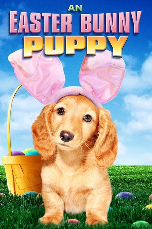 تنزيل An Easter Bunny Puppy في نوعية جيدة مجانا