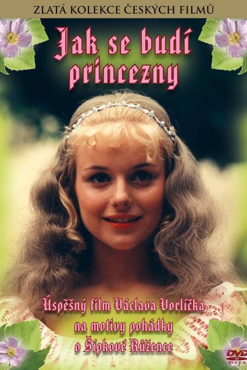 Assistir Filme Jak se budí princezny Gratuitamente Em Português