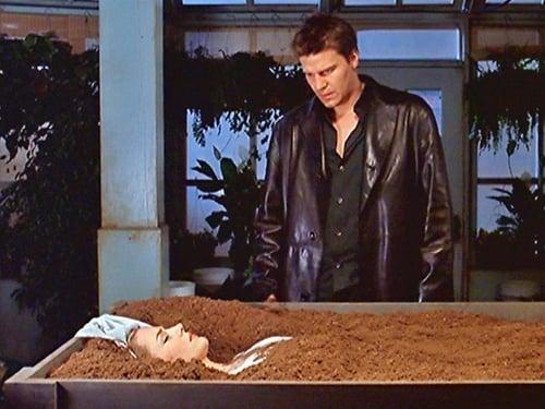 Assistir Angel S02E10 – 2×10 – Dublado