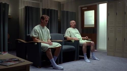 Breaking Bad - Season 4 - Episode 8: Hermanos