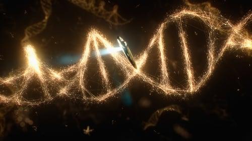 Algo que as Moléculas são Capazes de Fazer