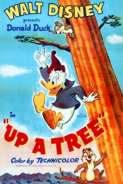 Película Up a Tree En Buena Calidad Hd 720p