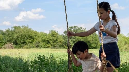 Minari – Historia de mi Familia