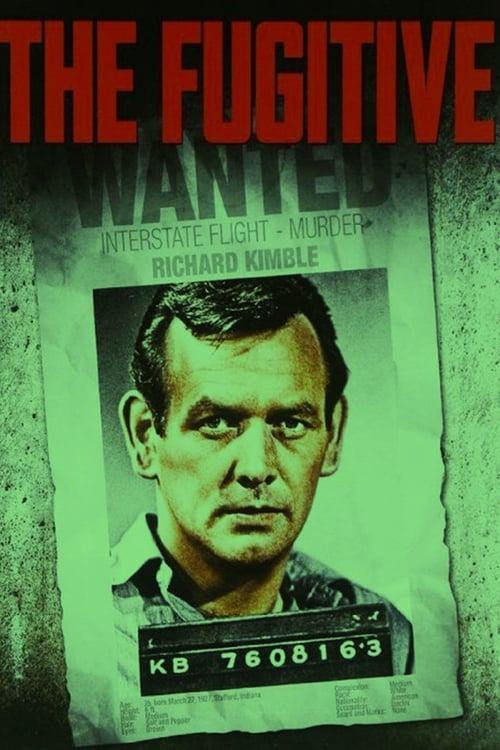 The Fugitive: Season 4
