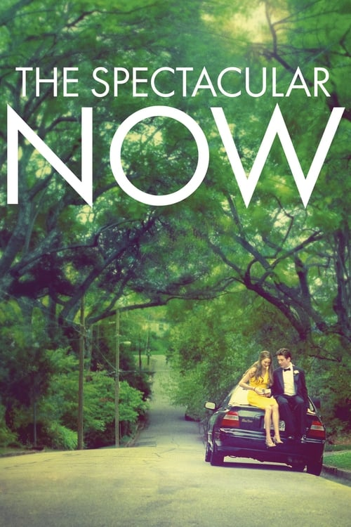 The poster of The Spectacular Now