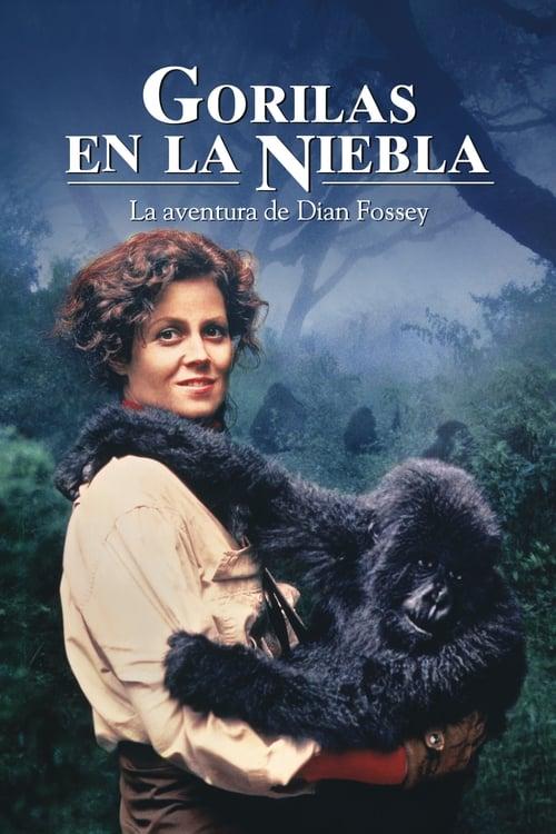 Mira Gorilas en la niebla Con Subtítulos En Español