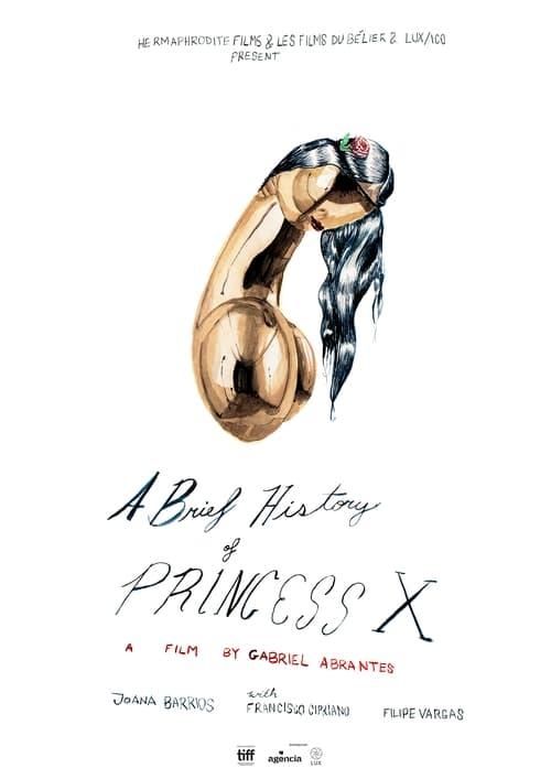 A Brief History of Princess X (2016)