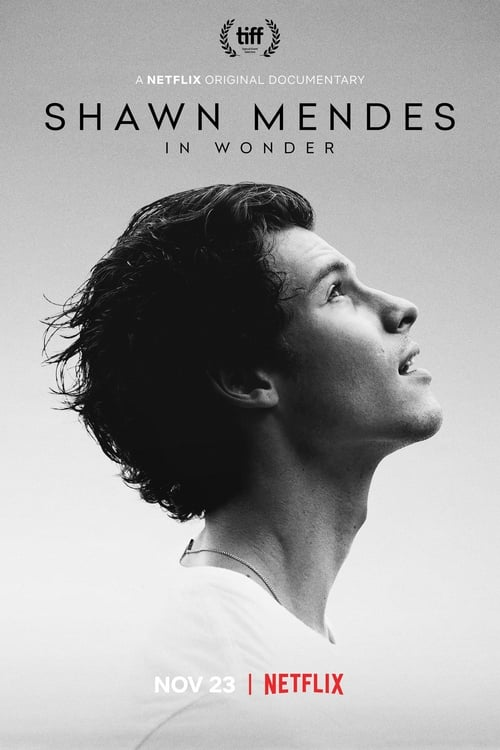 Shawn Mendes: In Wonder Here on the page