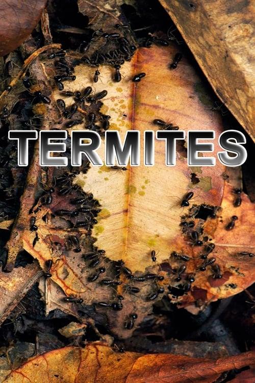 Termites: The Inner Sanctum (2012)