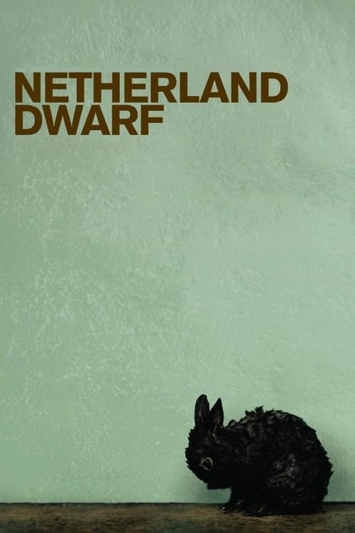 Netherland Dwarf (2008)