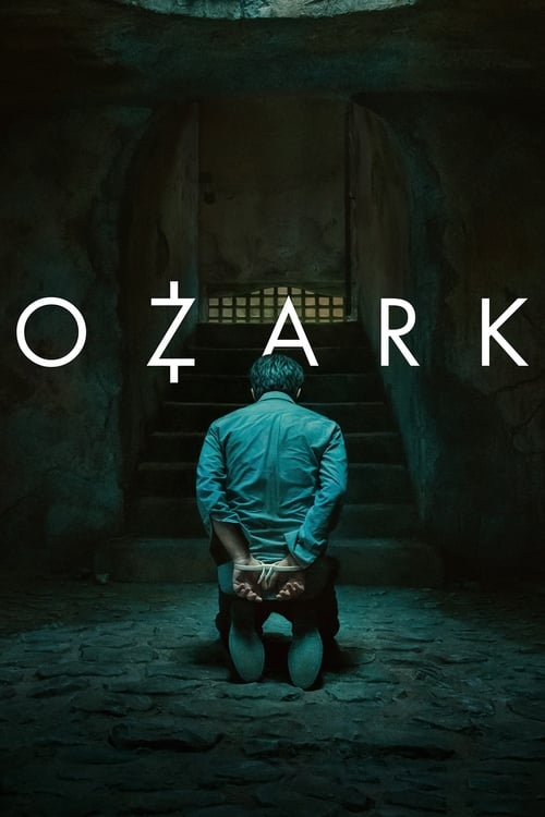 The poster of Ozark