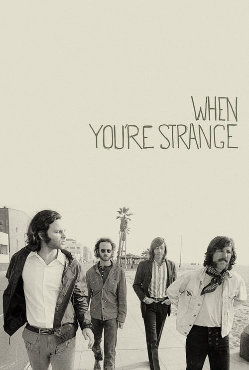 When You're Strange (2010)