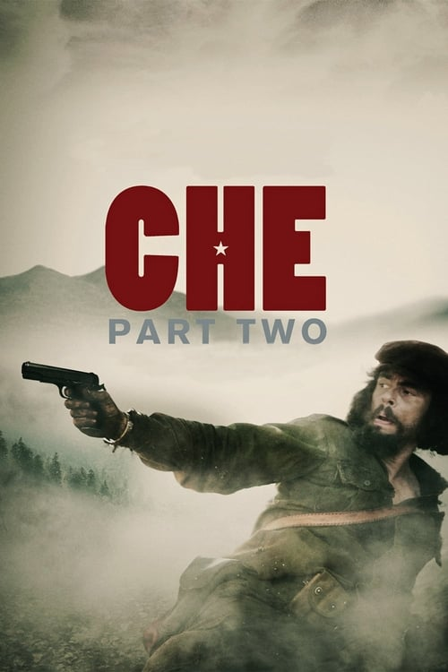 Largescale poster for Che: Part Two