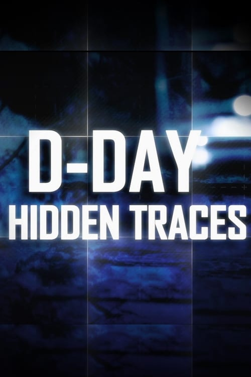 D-Day:  Hidden Traces (2014)
