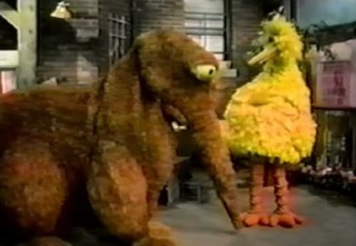Sesame Street 1971 Streaming Online: Season 3 – Episode Episode 276