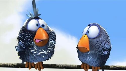 ჩიტებისთვის