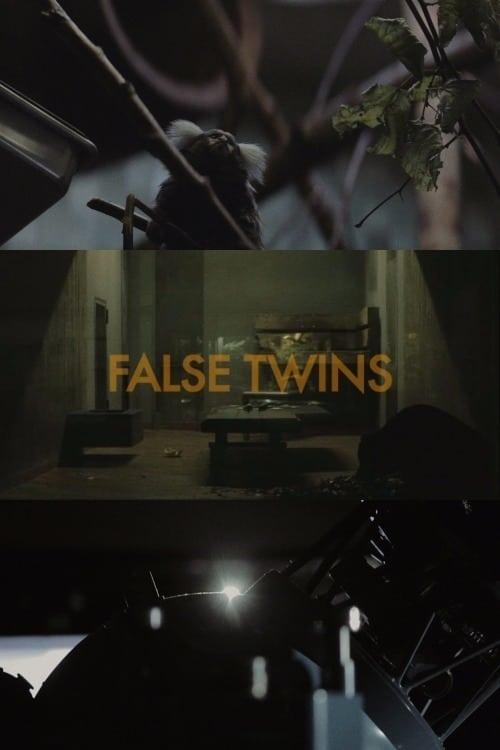 False Twins (2014)
